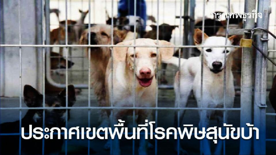 กรมปศุสัตว์ ประกาศเขตพื้นที่โรคพิษสุนัขบ้า ระบาดชั่วคราว จ.นนทบุรี