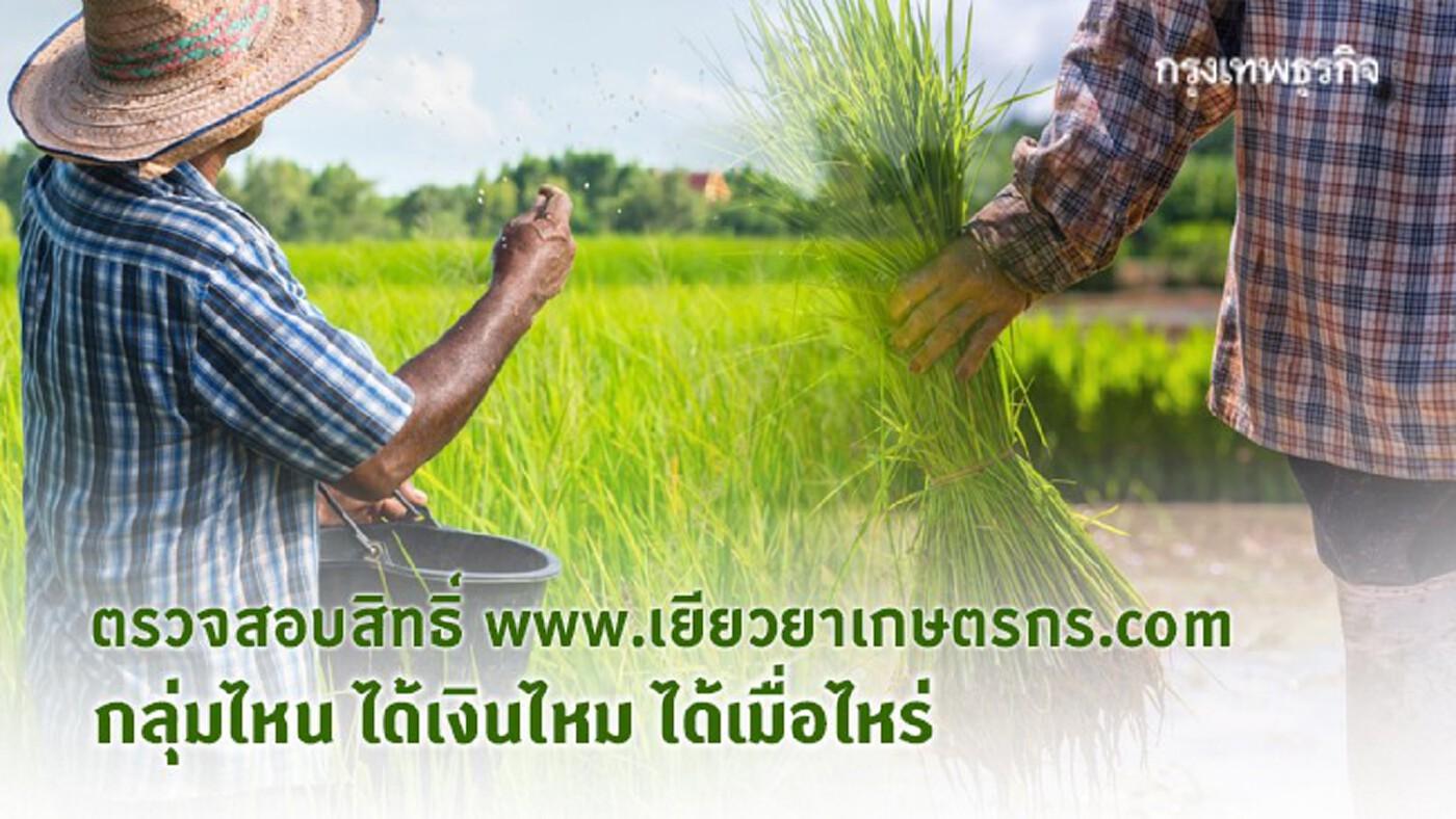 ตรวจสอบสิทธิ์ www.เยียวยาเกษตรกร.com กลุ่มไหน ได้เงินไหม ได้เมื่อไหร่ อย่างละเอียด!