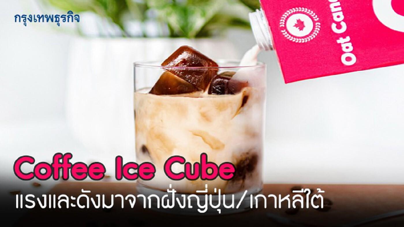 'Coffee Ice Cube' แรงและดังมาจากฝั่งญี่ปุ่น/เกาหลีใต้