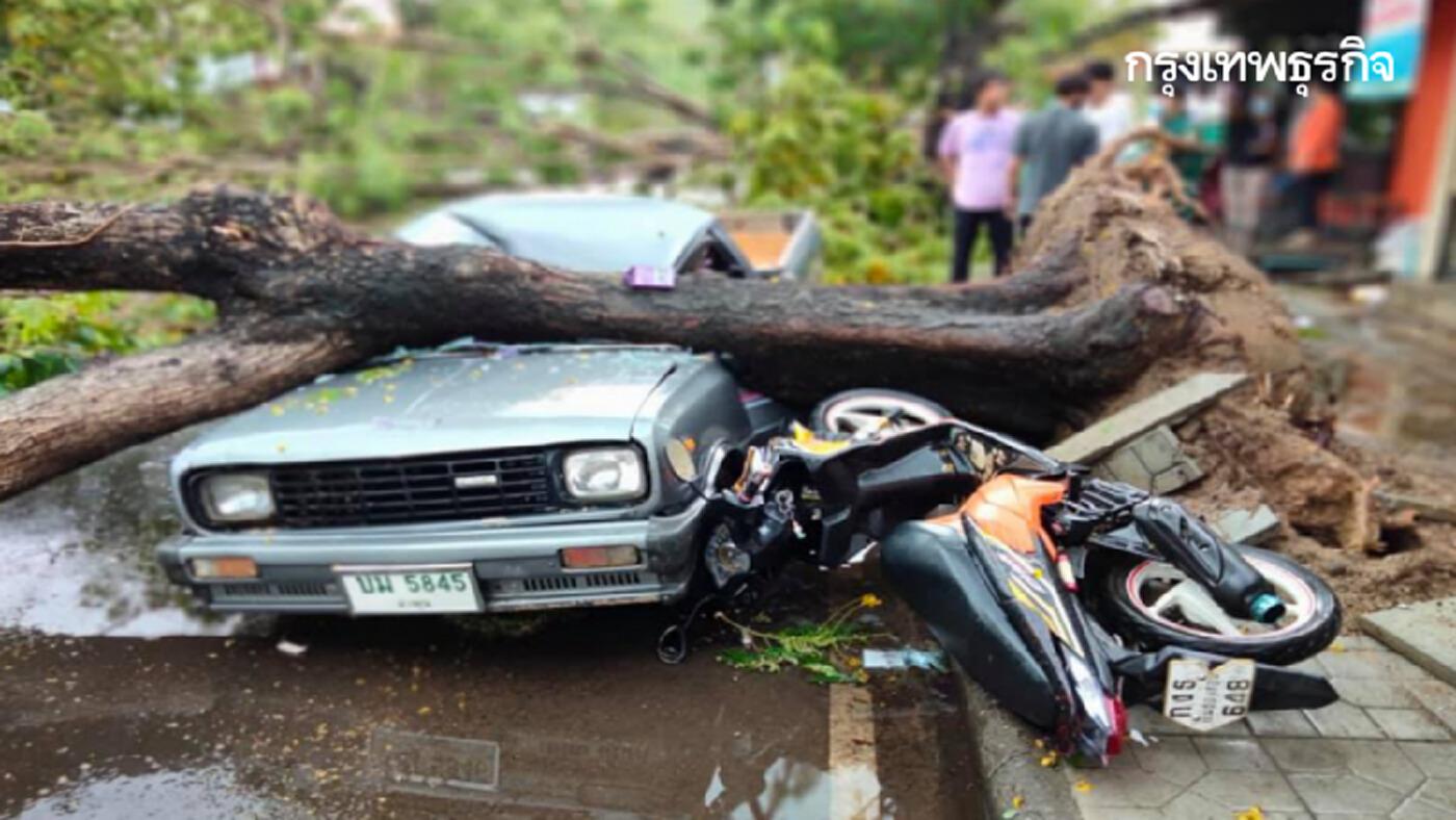 พายุถล่มแม่ฮ่องสอน ฝนตกหนัก ต้นไม้ทับรถเสียหายเพียบ