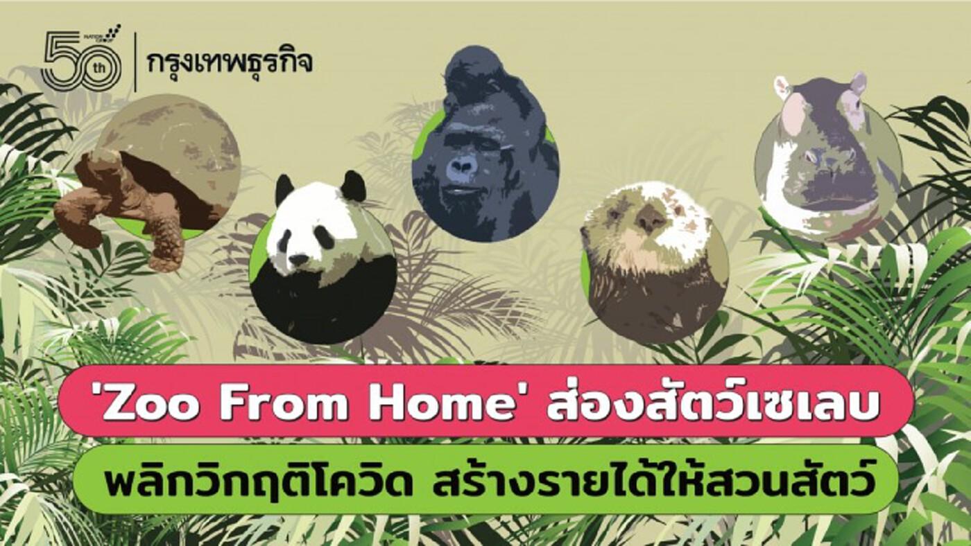 'Zoo At Home' ส่องสัตว์เซเลบ พลิกวิกฤติ 'โควิด' สร้างรายได้ให้สวนสัตว์