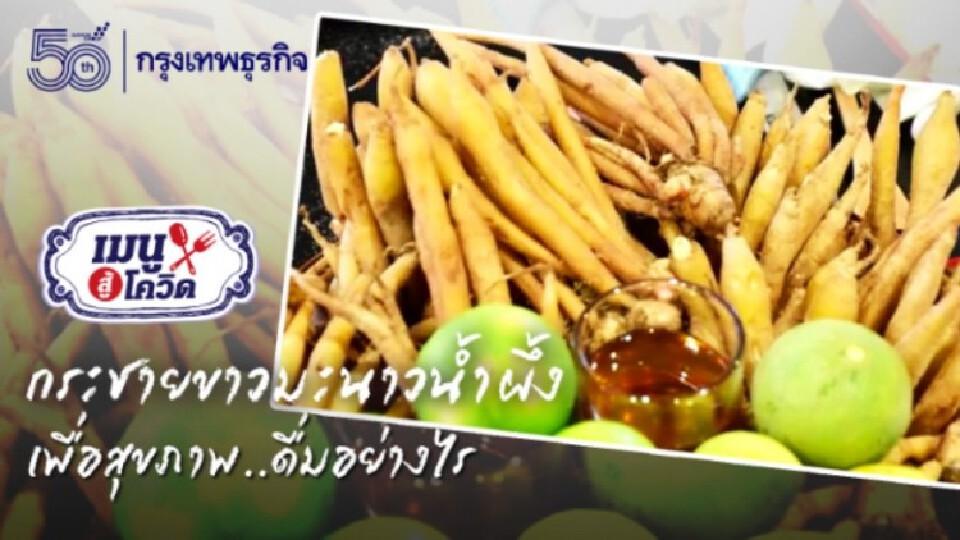 'กระชาย' น้ำผึ้ง 'มะนาว' สูตรเร่งด่วนฉบับ 'แพทย์แผนไทย' อยู่คอนโดก็ปลูก 'กระชาย' ได้