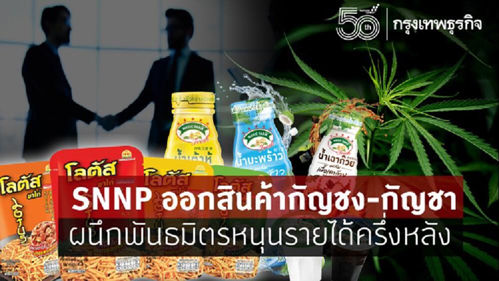 SNNP ออกสินค้ากัญชง-กัญชา ผนึกพันธมิตรหนุนรายได้ครึ่งหลัง