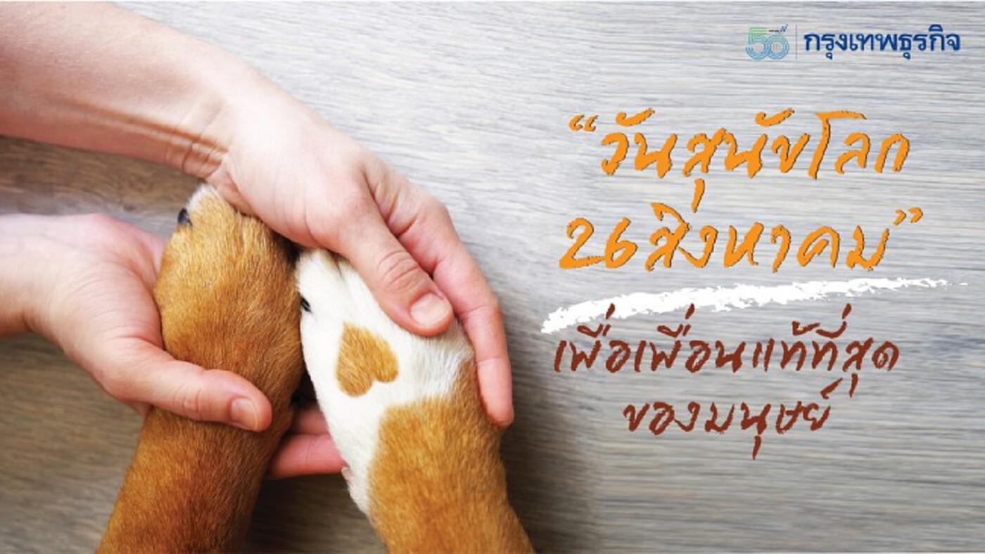 'วันสุนัขโลก 26 สิงหาคม' สุนัขสายพันธุ์ไหนฉลาดที่สุด