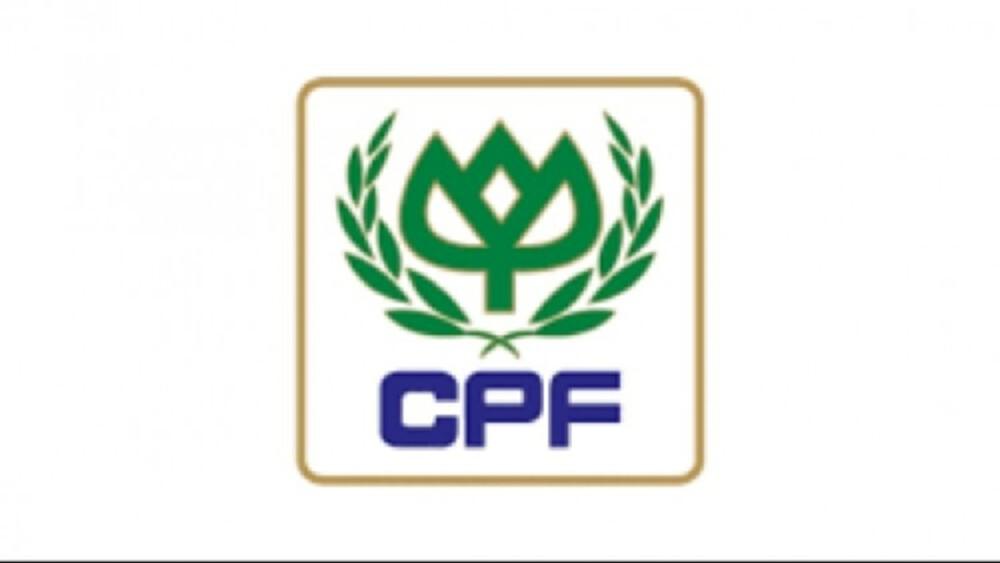 CPF ลุยซื้อธุรกิจสุกรในรัสเซีย 9.9พันล้าน คาดแล้วเสร็จ ม.ค.65