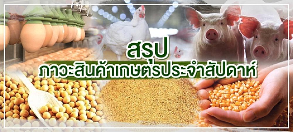 สรุปภาวะสินค้าเกษตรประจำสัปดาห์วันที่ 11-15 ตุลาคม 2564