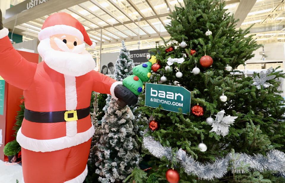 บ้านแอนด์บียอนด์ และ ไทวัสดุ เตรียมต้อนรับเทศกาลแห่งความสุข พร้อมเปิดจองต้นคริสต์มาสจริงจากแคนาดา