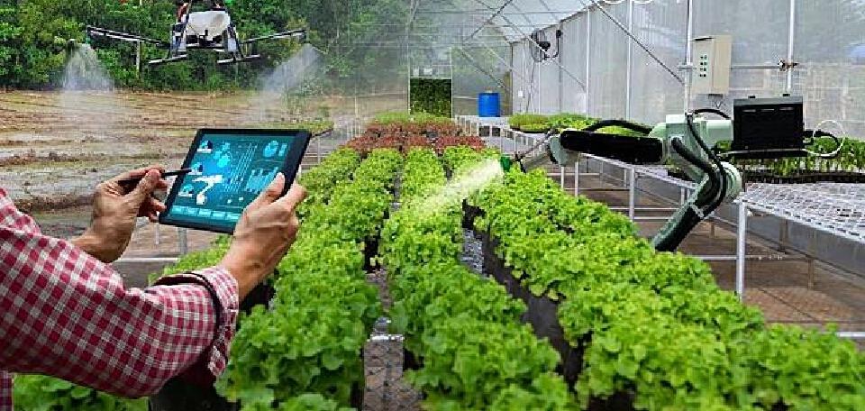 """จัดเสวนาออนไลน์ """"เกษตรสมัยใหม่"""" เคลื่อนไทยสู่ครัวอาหารเอเชียและโลก"""