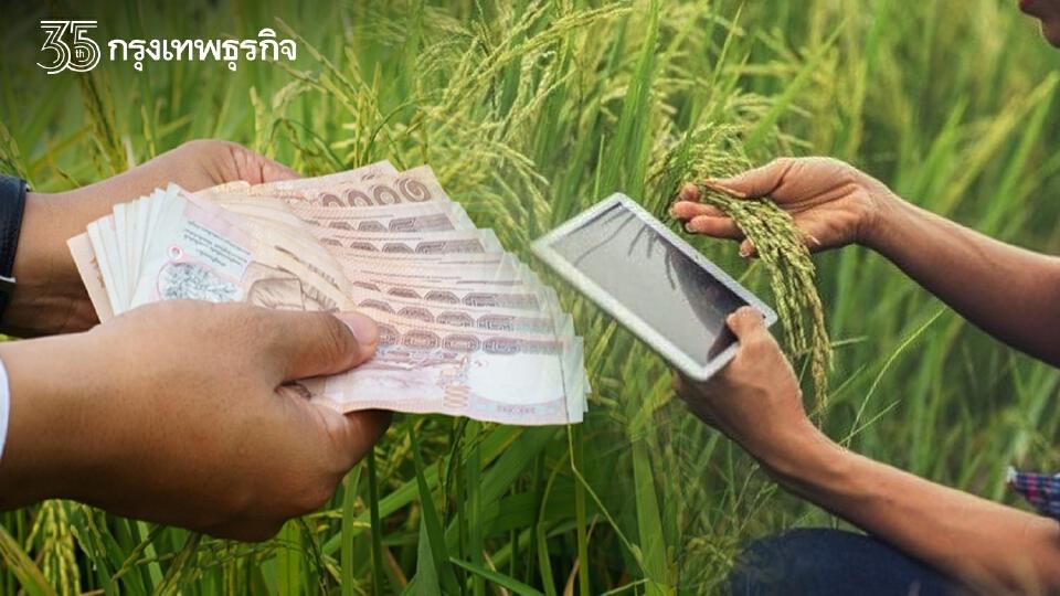 """เงินช่วยเหลือเกษตรกร """"ประกันรายได้เกษตร"""" ปี 2564/65 เช็คที่นี่ รายละเอียดครบ"""
