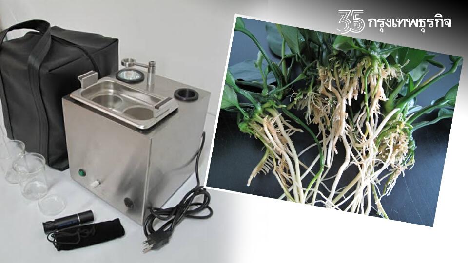 สุดปัง นวัตกรรมชุดตรวจศัตรูพืชอย่างง่าย แม่นยำ รู้ผลไว เกษตรกรตรวจเองได้
